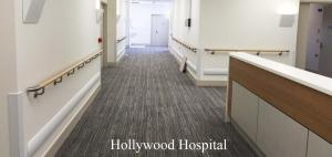 Hollywood-Hospital-past-project-handrails