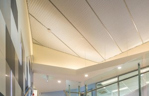 Acoustic ceilings installed in office