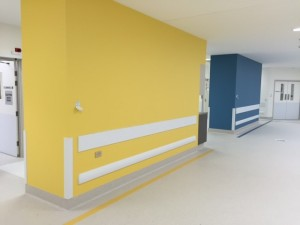 wall guard supplied to hospital